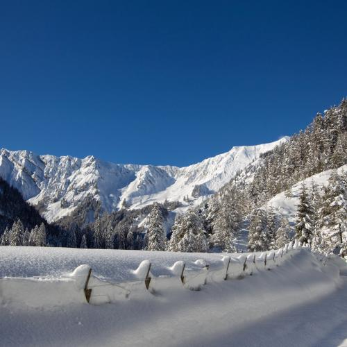 Winterwonderland at Achensee region