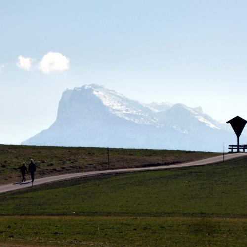 A path , snowy mountain in the background © Salzburger Nachrichten, Christian Heugl