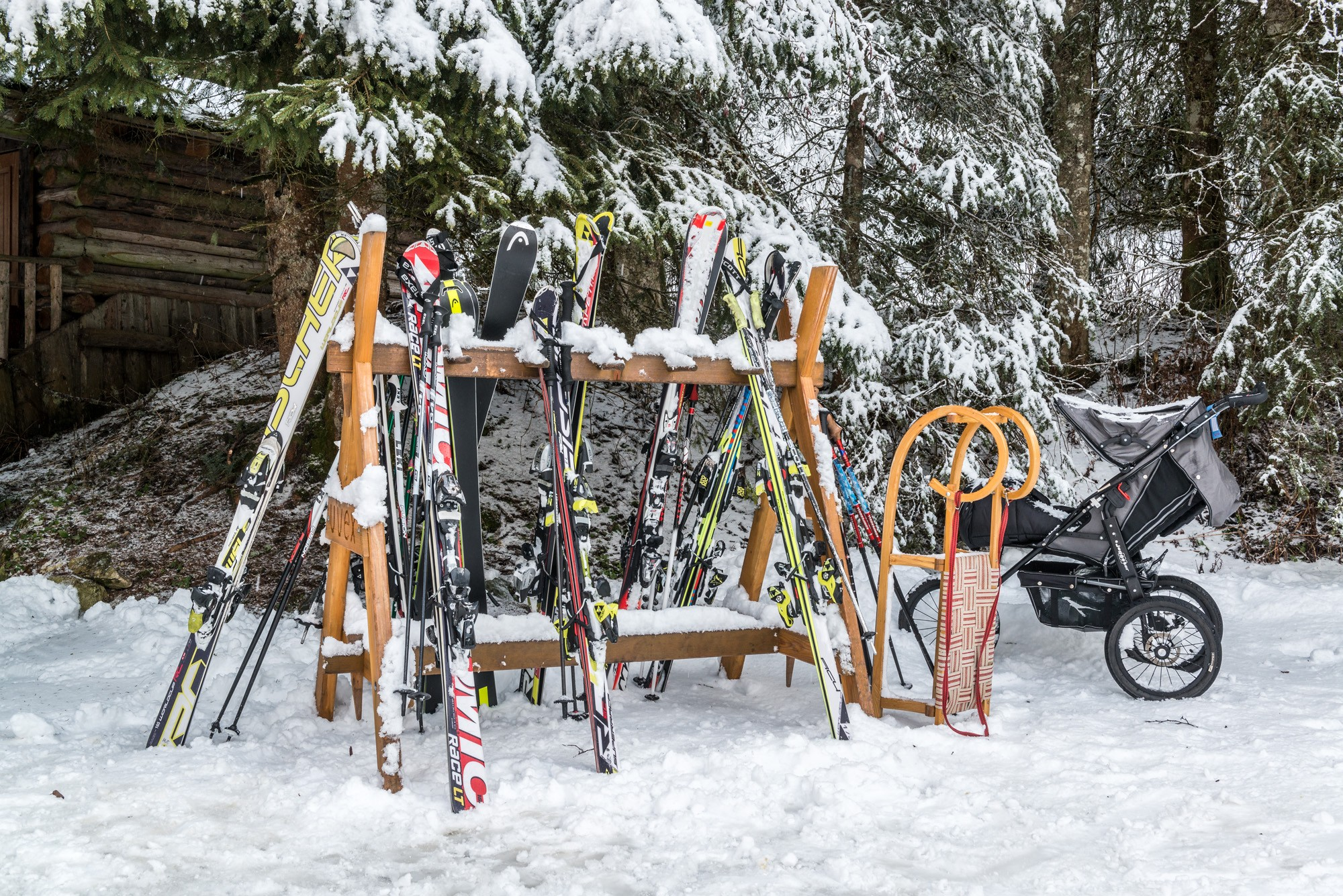 Skis in front of snowy trees © SalzburgerLand Tourismus