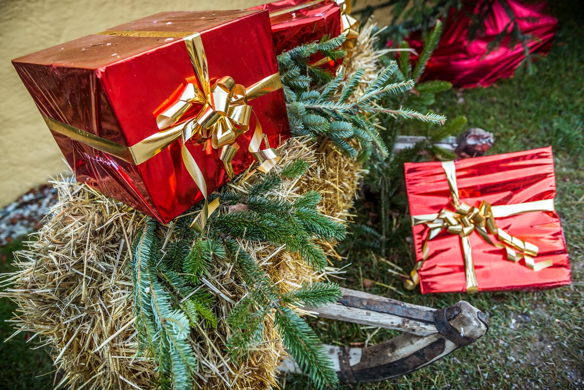 Heu, Geschenke, Rotes Geschenkspapier, Goldene Schleifen, Tannenzweige
